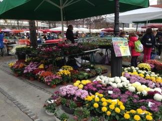 Ljubjana Market
