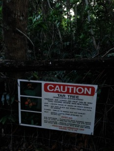 Warning on trail to beach.